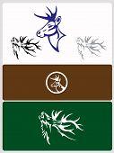 picture of deer rack  - Vector Illustration of a Whitetail Deer Head - JPG