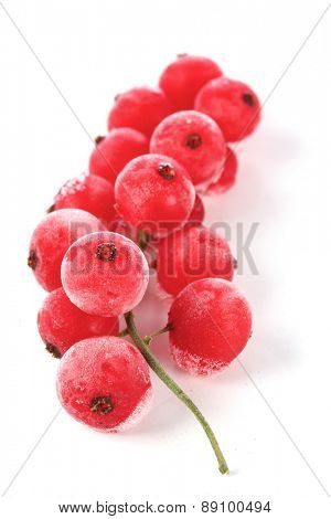 Frozen currants on white bacground