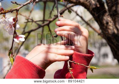 Child Touch Branch