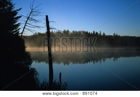 Morning Fog On Pond