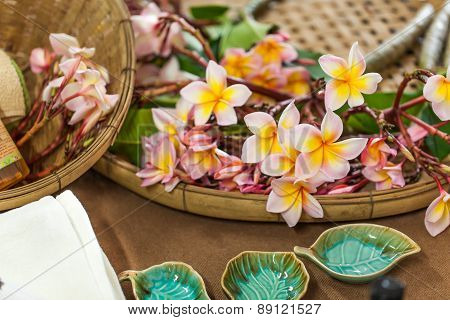 white , pink and yellow Plumeria flowers