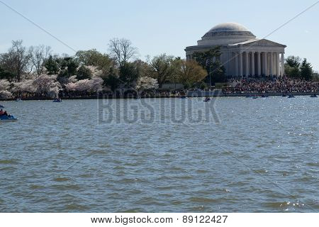Thomas Jefferson Memorial By The Flowers