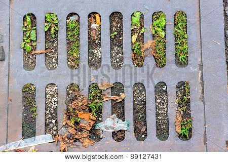 road drainage with grass, a symbol of life and growth and decay kanalisationund