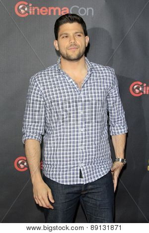 LAS VEGAS - APR 21:  Jerry Ferrara at the Warner Brothers 2015 Presentation at Cinemacon at the Caesars Palace on April 21, 2015 in Las Vegas, CA