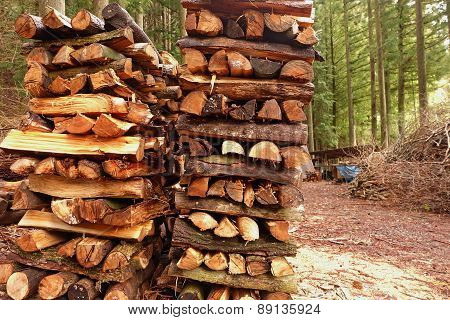 The Pile Of Firewood