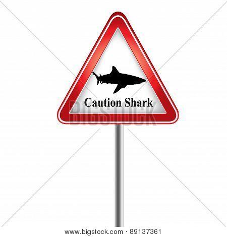 Caution The Shark