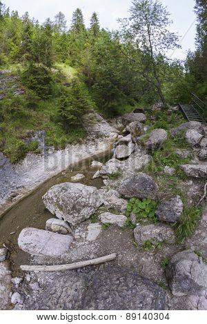 Mountain Ravine