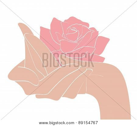 Hands And Rose