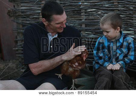City Boy First Saw The Chicken