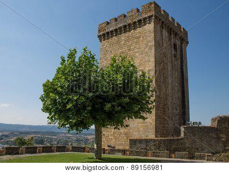 Tower and tree of castle Monforte de Lemos in Galicia, Spain
