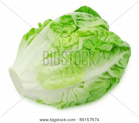 Fresh salad romaine lettuce