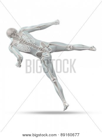 3D render of a male medical figure in kick boxing pose with skeleton