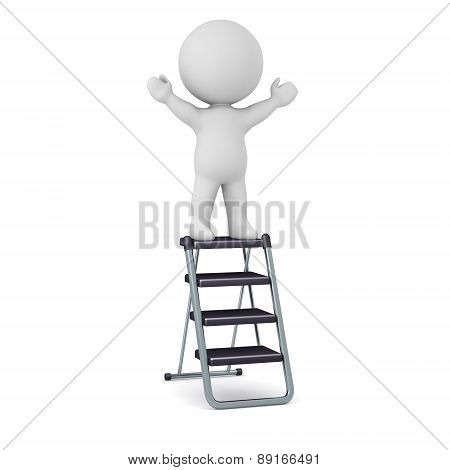 3D Character Standing on Step Ladder
