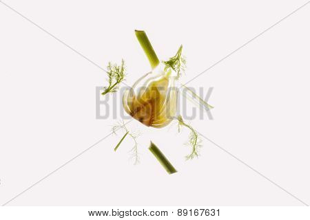 Parts of a raw fennel thinly cut open.