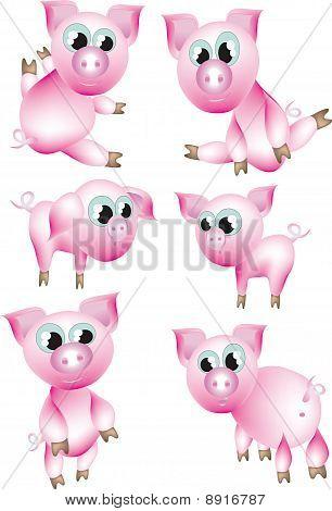 Set : pink pigs.