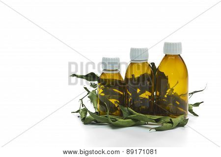 medicine bottles natural herbs leaves isolated on white background