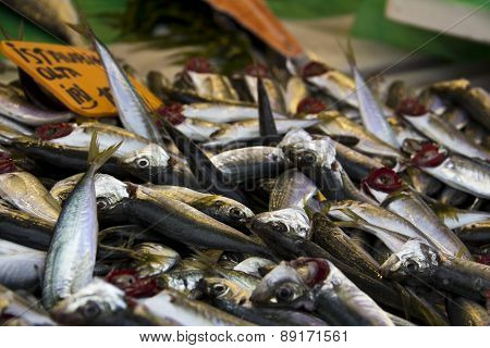 anchovies on fish market close up