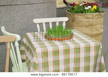 Grass Growing From A Container Located On A Restaurant Table.