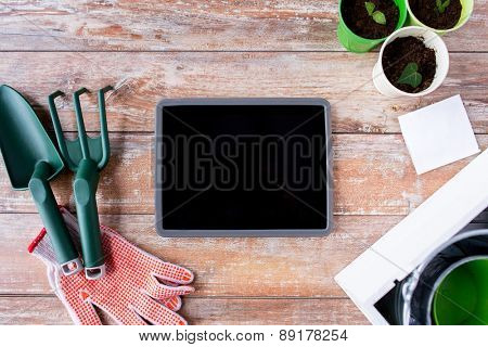 gardening, technology and planting concept - close up of tablet pc computer blank screen, seedlings, seeds and garden tools on table
