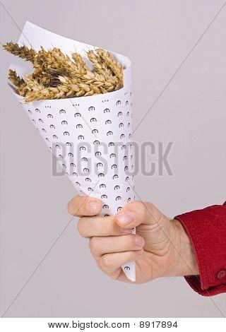 corn in a paper cone