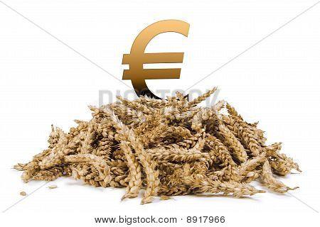 pile of grain