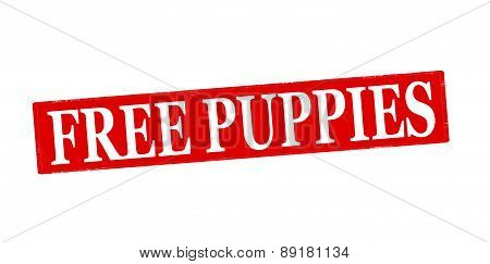 Free Puppies