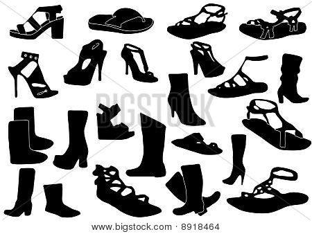 Illustration of some woman shoes