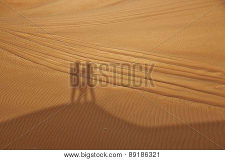 Shadows In Desert