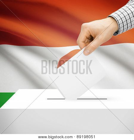 Voting Concept - Ballot Box With National Flag On Background - Niger