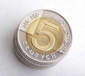 pic of zloty  - Polish money  - JPG