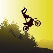 Постер, плакат: Motor Bike