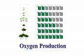 image of oxygen  - The chart show Oxygen Production on white background - JPG