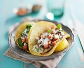 picture of corn  - mexican authentic carnitas tacos with sour cream and corn tortilla - JPG
