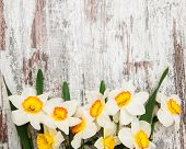 picture of daffodils  - Border with Daffodil flowers on a wooden background - JPG