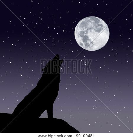 Howling wolf with the full moon