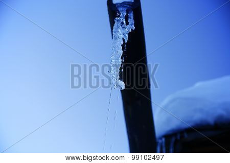 icicles sparkling white melting ice hanging down concept for warming. copy space.