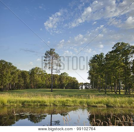 Golf Course Fairway With Trees And Pond In Late Afternoon Sun