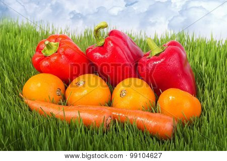 Vegetables On The Green Grass