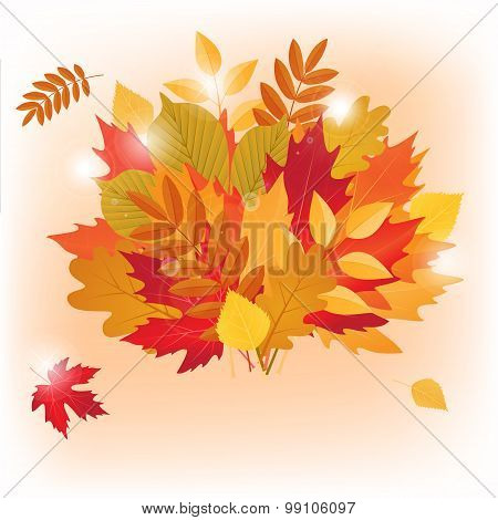 vector autumn bouquet made of maple and other leaves