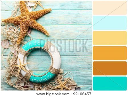 Beautiful sea composition with lifebuoy and shells on wooden background and palette of colors