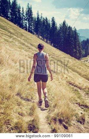 Young female hiker walking along a mountain trail crossing a steep grassy slope towards an evergreen forest plantation, viewed from the rear on a sunny summer day