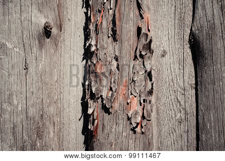 Natural Shabby Wooden Background