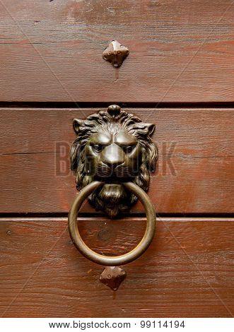 Bronze Lion Head Handle On Wooden Door