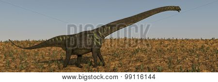 walking mamenchisaurus