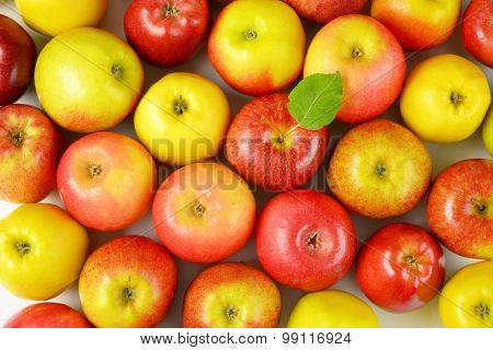 many red and yellow apples side by side