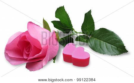 Pink rose with candy hearts