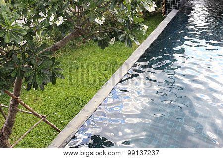Swimming Pool Of Modern Resort Hotel