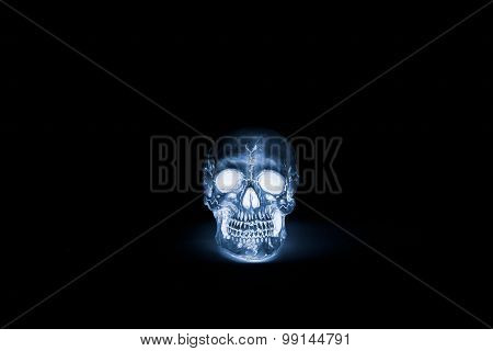 Human Skulls Isolated On Black. X-ray Effect.