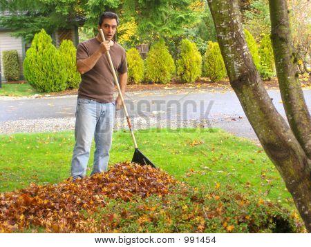 Homem fazendo jardinagem