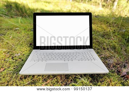 Laptop With Blank Screen On The Moss In The Forest